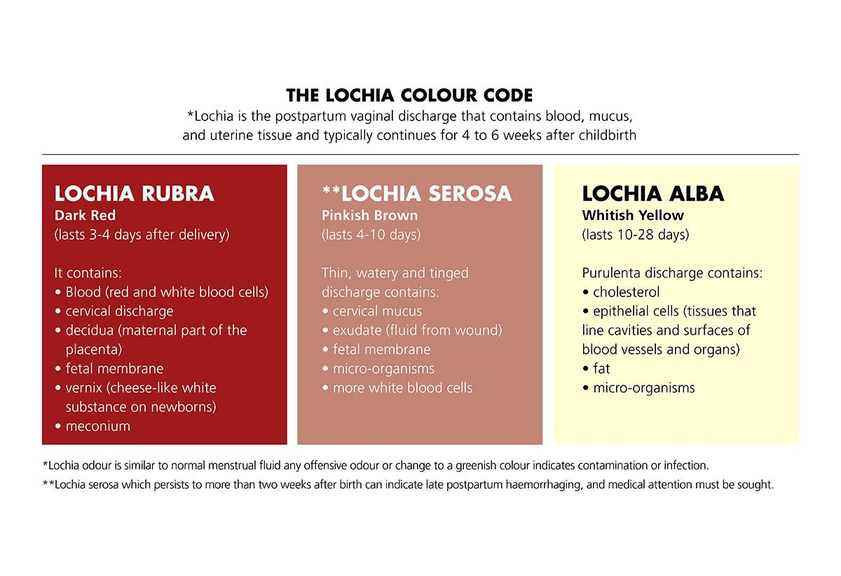 Lochia Colour Code
