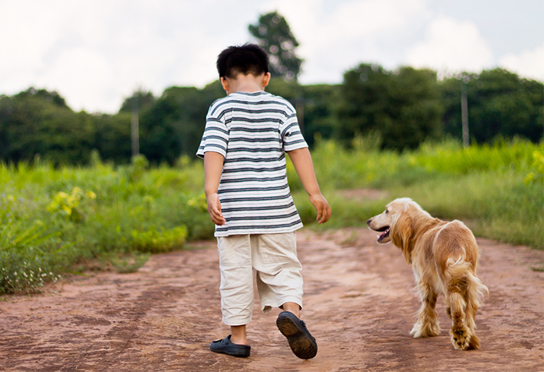 boy walking dog