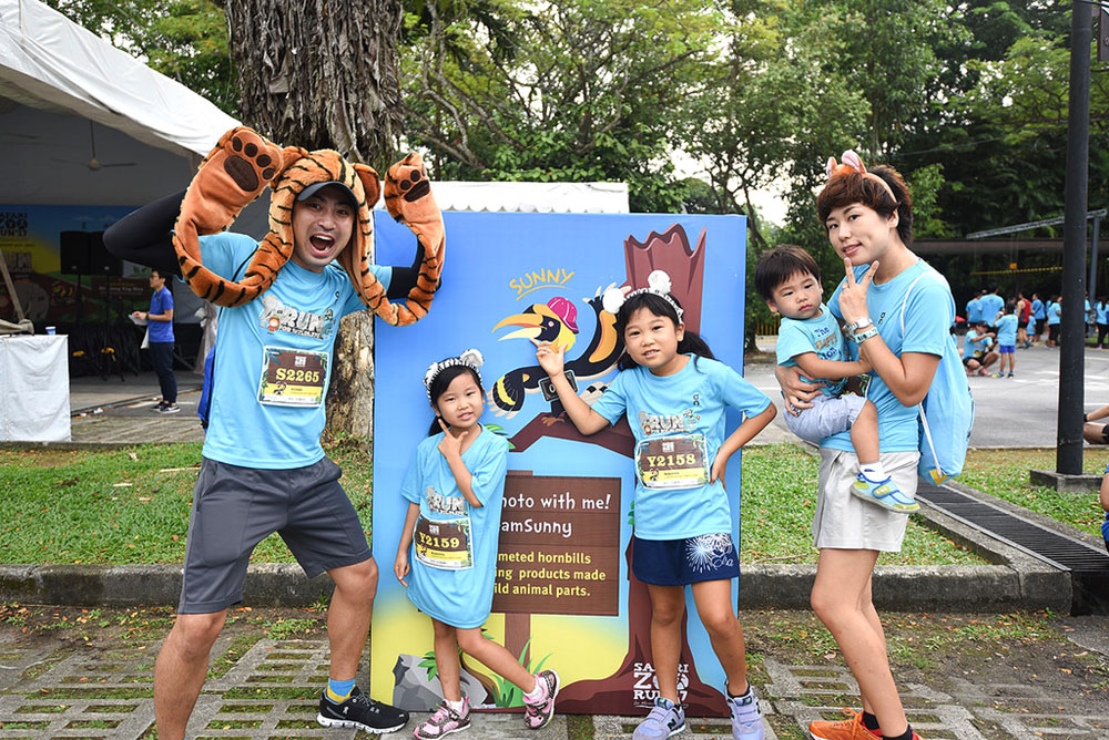 Safari Zoo Run 2018