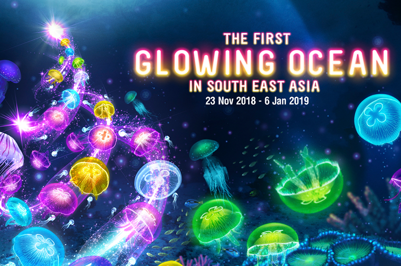 Festive-Family-Friendly-Activities-to-Enjoy-This-December-06-Glowing-Oceans-at-SEA-Aquarium