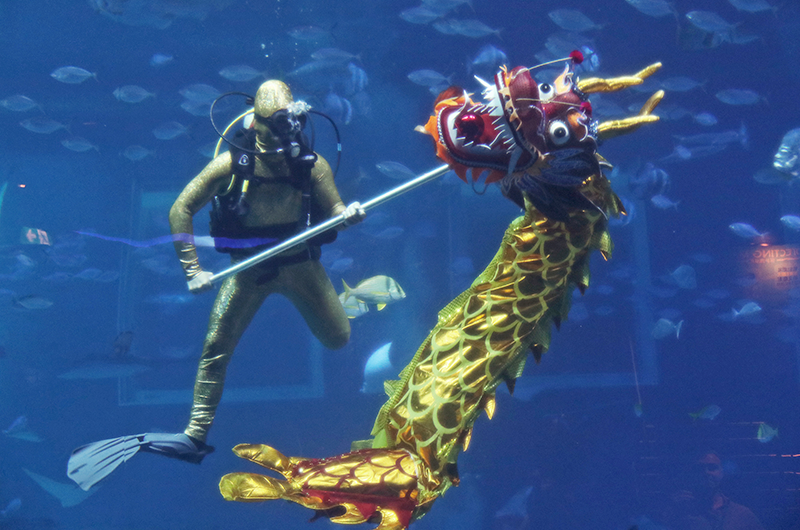 8-CNY-Events-to-Usher-in-the-Prosperous-New-Year-with-Your-Family-03-SEA-Aquarium
