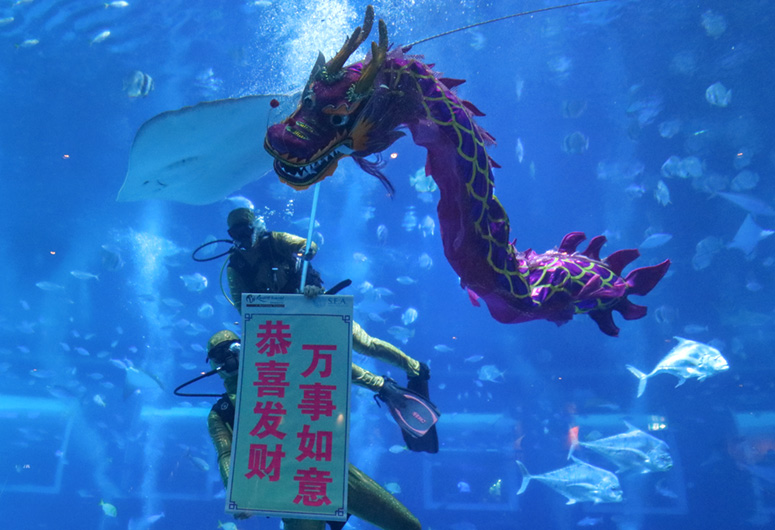 singapores-child-feb-2019-event-sea-aquarium-underwater-dragon-dance